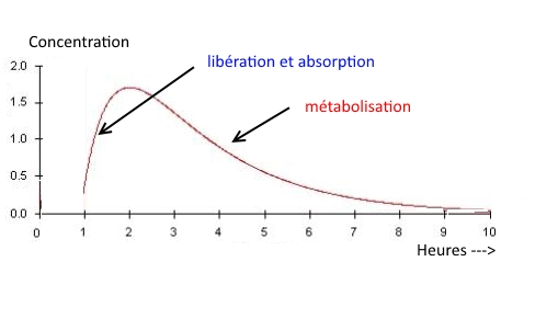 metabolisation definition