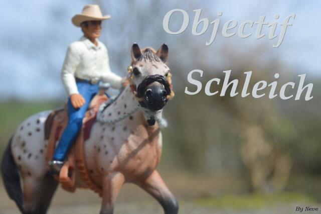 Objectif Schleich !