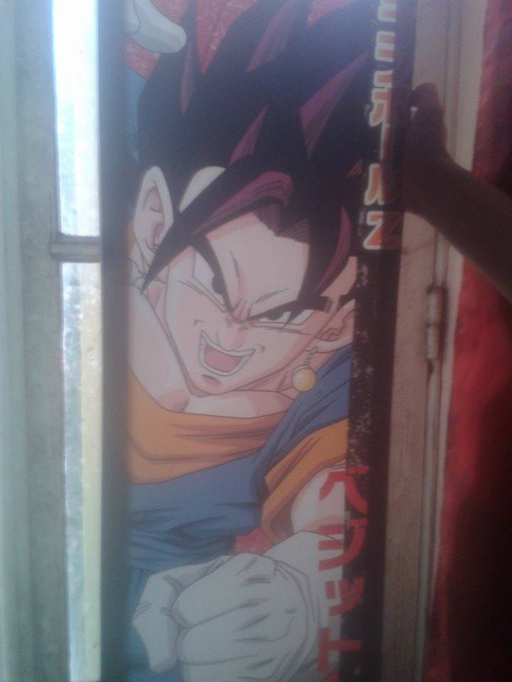Collection DBZ 11897110