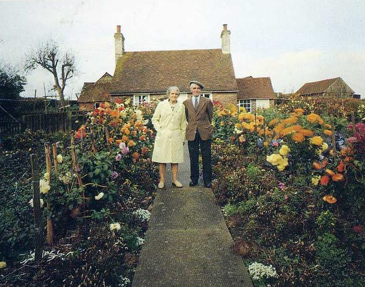 Un vieux couple prend la même photo à chaque saison Ced17010