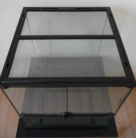 Isoler un terrarium en verre  P1170510
