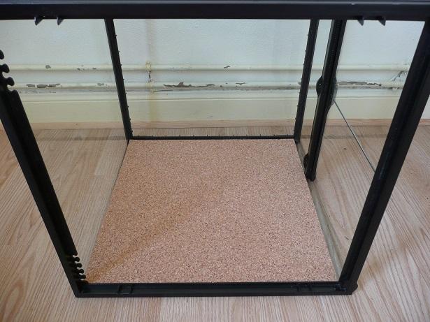 Isoler un terrarium en verre  P1170514