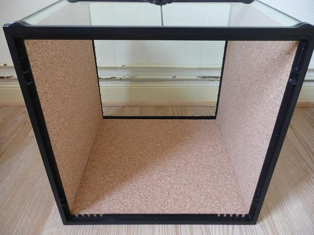 Isoler un terrarium en verre  P1170610