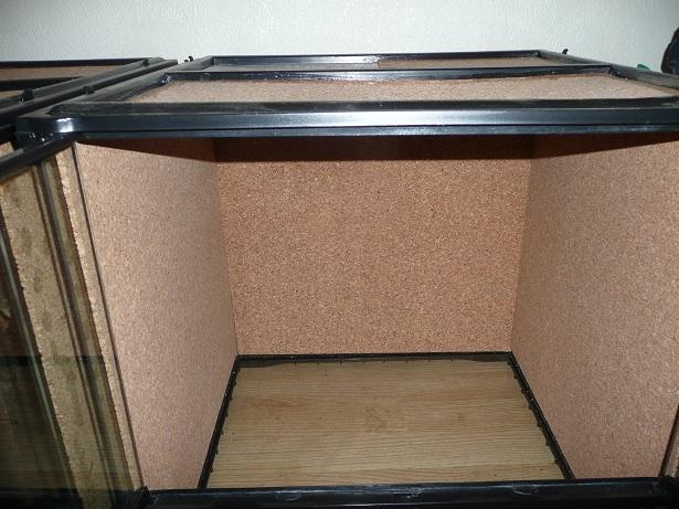 Isoler un terrarium en verre  P1190013