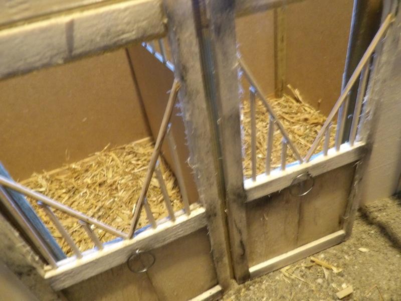 les chevaux de l'écurie Du vieux porche, bienvenue dans ce refuge miniature - Page 4 Imgp0217