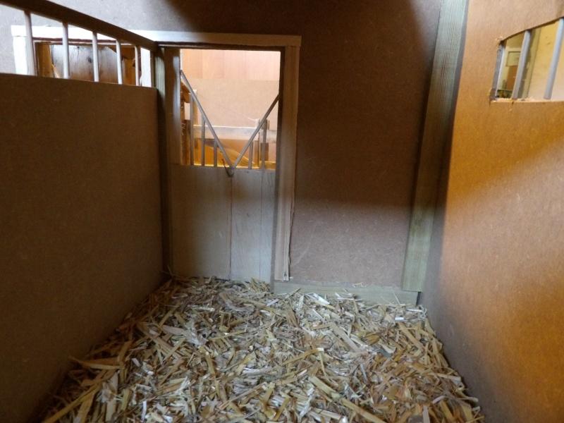 les chevaux de l'écurie Du vieux porche, bienvenue dans ce refuge miniature - Page 4 Imgp0218