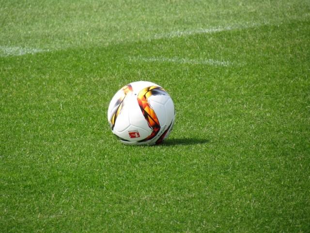 Trainingsauftakt der Saison 2015/2016... Img_8316