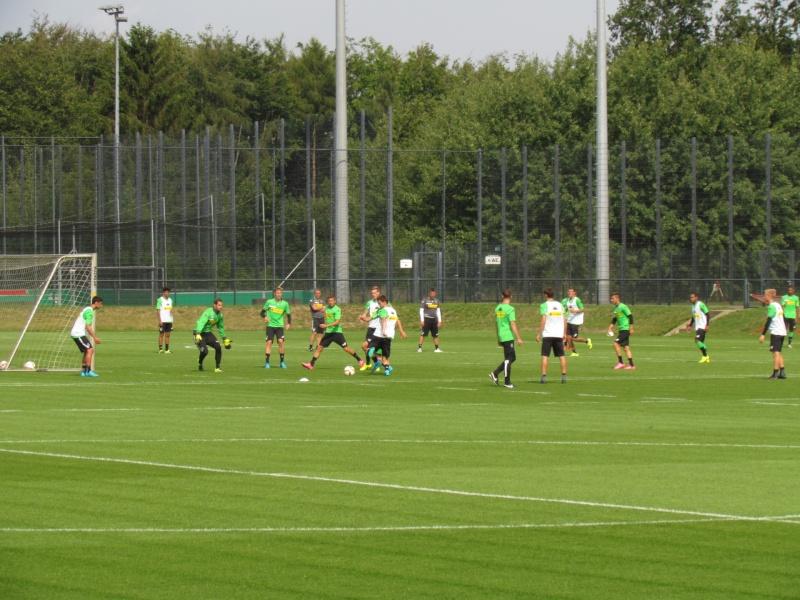 Erstes Training mit Nico Schulz - Trainingsbericht vom 19.08.2015 Img_9528