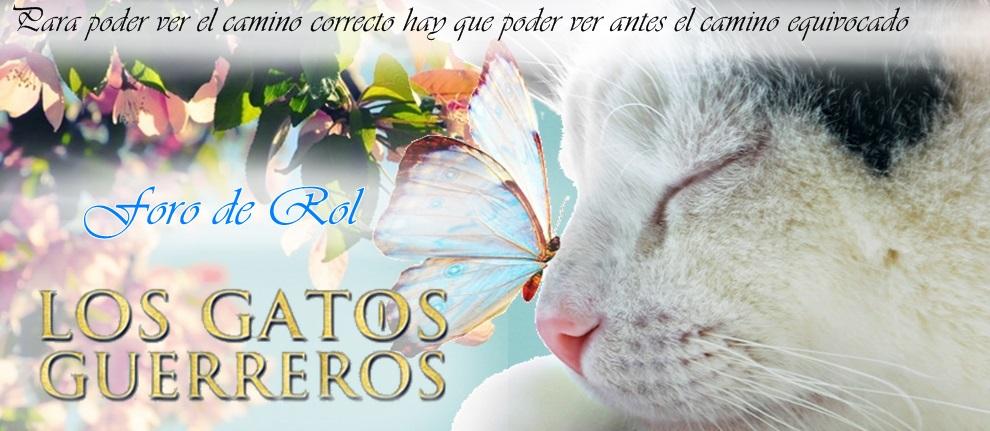 Rol Los Gatos Guerreros
