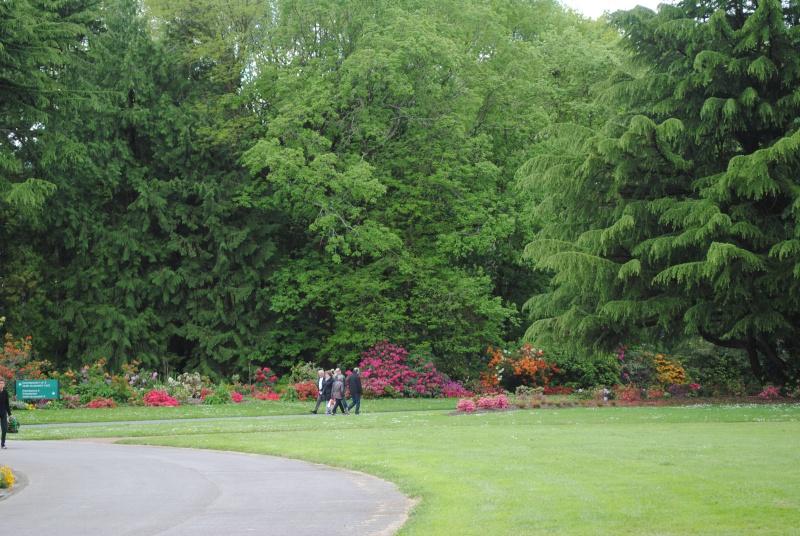 Cimetière Parc de Nantes- Orvault Dsc_0812