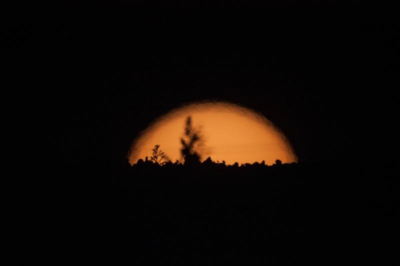 Soiré du 29 - 06 et soiré du 30 - 06 Jupi / Venus Img_0912