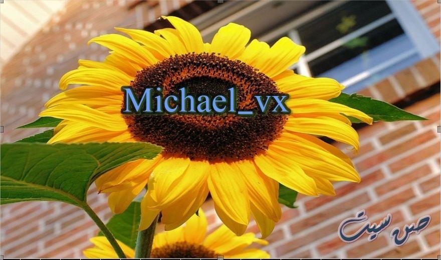 اسم مايكل في صورة  Downlo30