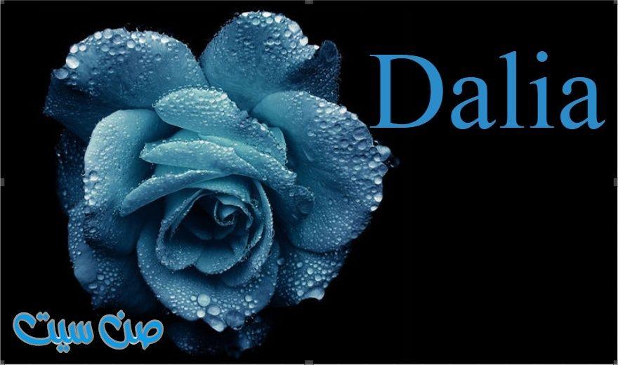 اسم داليا في صورة  Ooo10