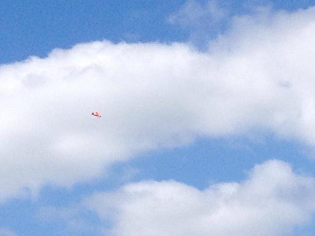 photos d expos avion et helico 10377110