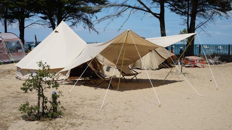 Une Sibley à Noirmoutier Dsc01311