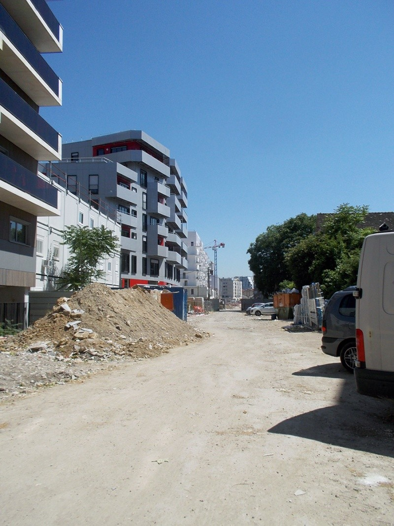 Juin 2015 - avec un beau soleil et la future rue qui se déssine - Page 5 Dscn1711