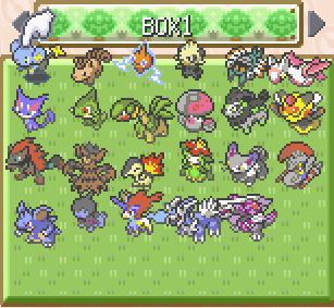 pokemon dark rising best team