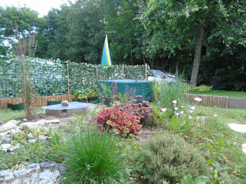 Le jardin de mes boettgeri Dsc03430
