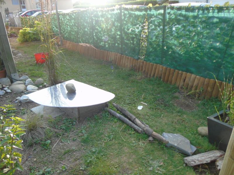 Le jardin de mes boettgeri Dsc03433
