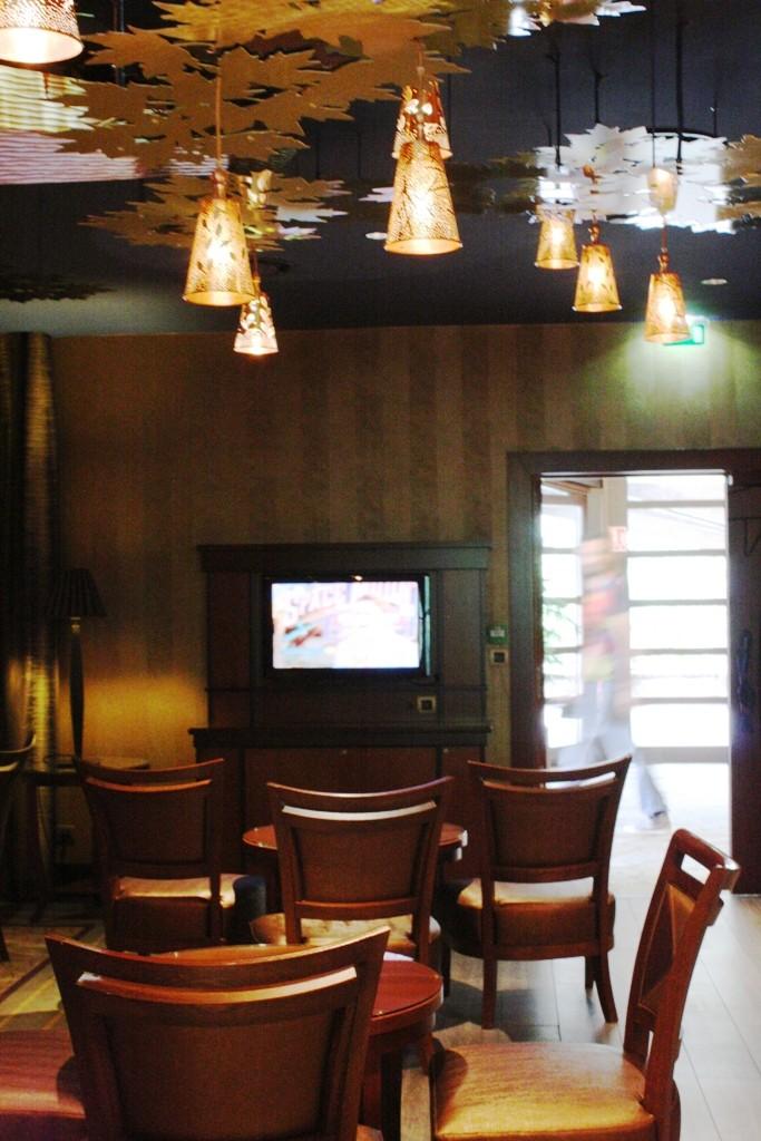 Le Golden Forest Club à l'hôtel Disney's Sequoia Lodge - Page 4 Img_9416