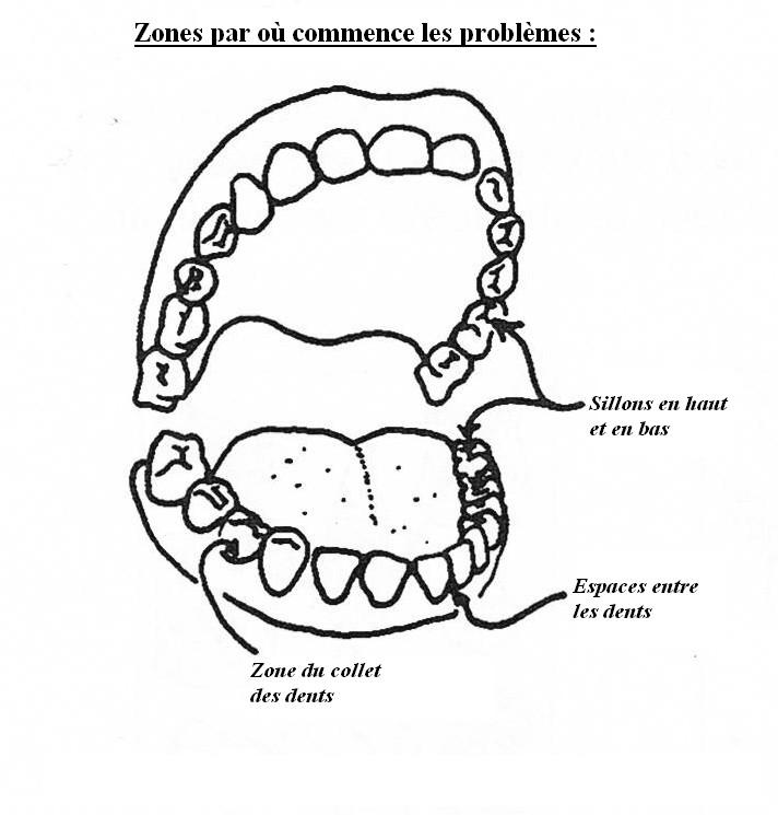 Santé Buco dentaire : quotidien et terrain. Endroi10