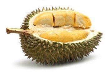 Lus tshaj xo. - Page 2 Durian10