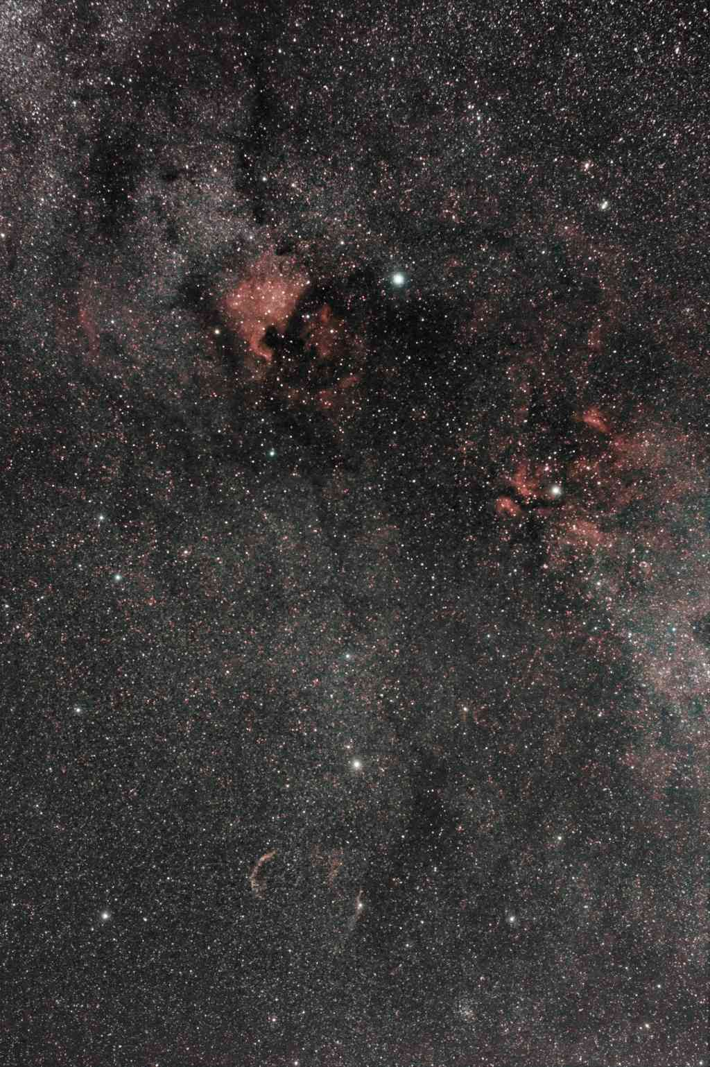 Région du Cygne  Cygnus10