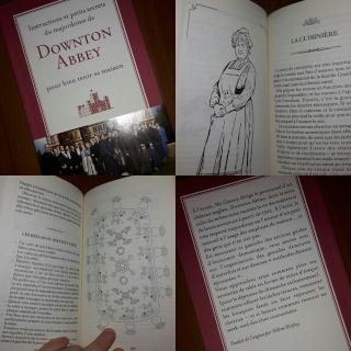Livre :  Instructions et petits secrets du majordome de Downton Abbey pour bien tenir sa maison 11391711