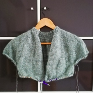 Aimez-vous tricoter?  - Page 12 Img_2036