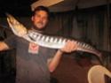 giacgoldfish