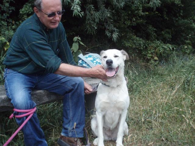 Rando' chien, seconde édition! P1013525