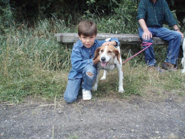 Rando' chien, seconde édition! P1013528