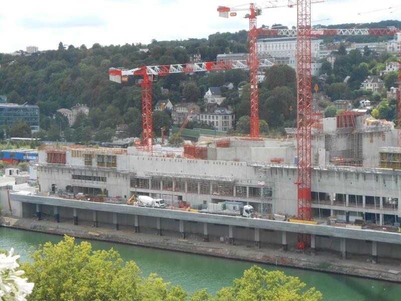 La Seine Musicale de l'île Seguin - Page 11 Dscn2913