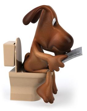 La propreté chez le chien/le chiot Propre10