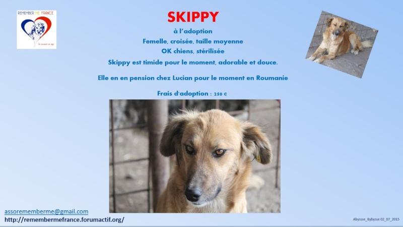SKIPPY, femelle, croisée, taille moyenne née en 2014 (Pascani) - adoptée par Maïté et Maxime (dpt90) Skippy11