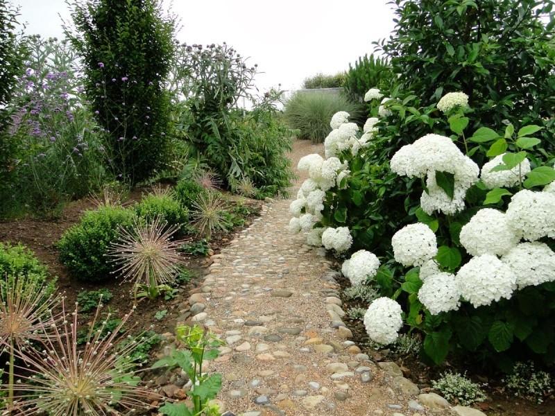 massifs en blanc - fleurs et feuillages : belles associations  Plouyc22