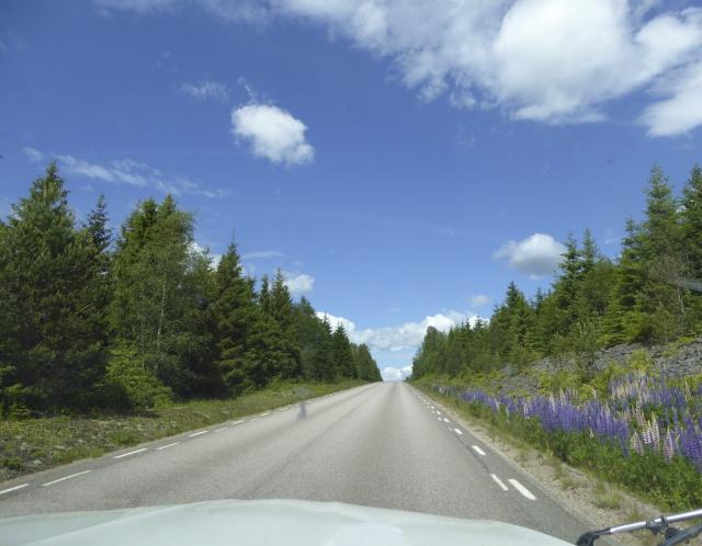 Reise durch Schweden! P1020515