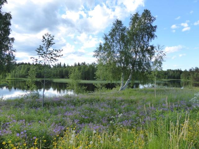 Reise durch Schweden! P1020518