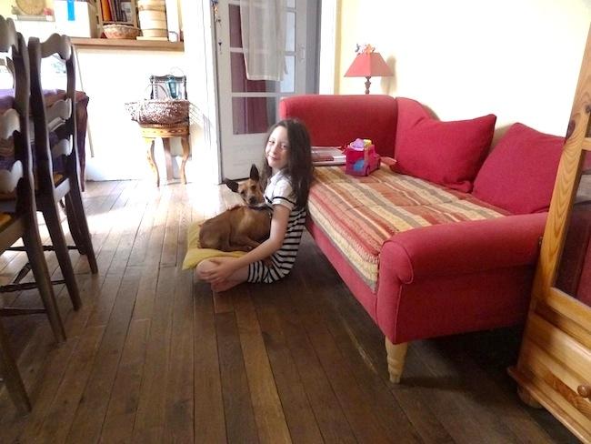 Ophélie 7 ans, en SPA en Ardèche cherche sa famille pour la vie !! - Page 2 Dsc00010