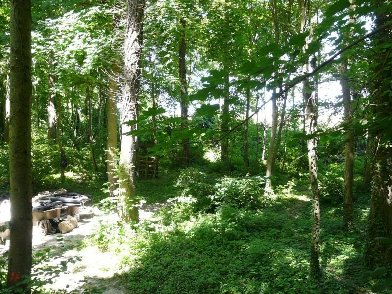 Photo du terrain en été  P1060624