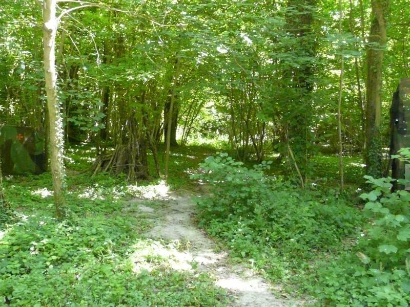 Photo du terrain en été  P1060627