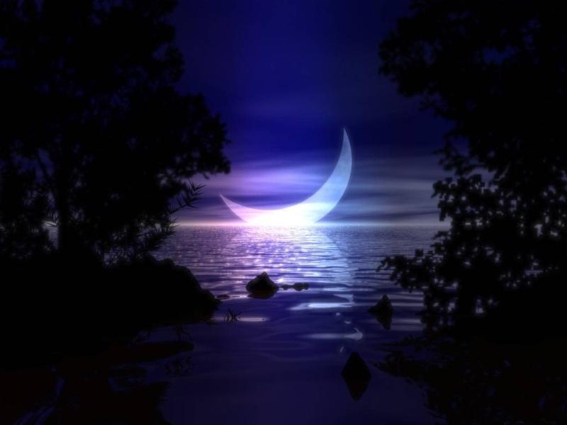 Au clair de Lune Dyn00110