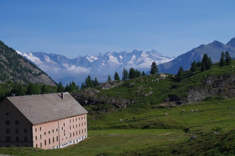 Hybrides suisses 114