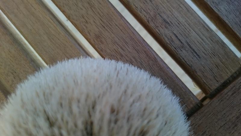 Acheter une touffe, oui, mais laquelle et où? - Page 2 Dsc_0616