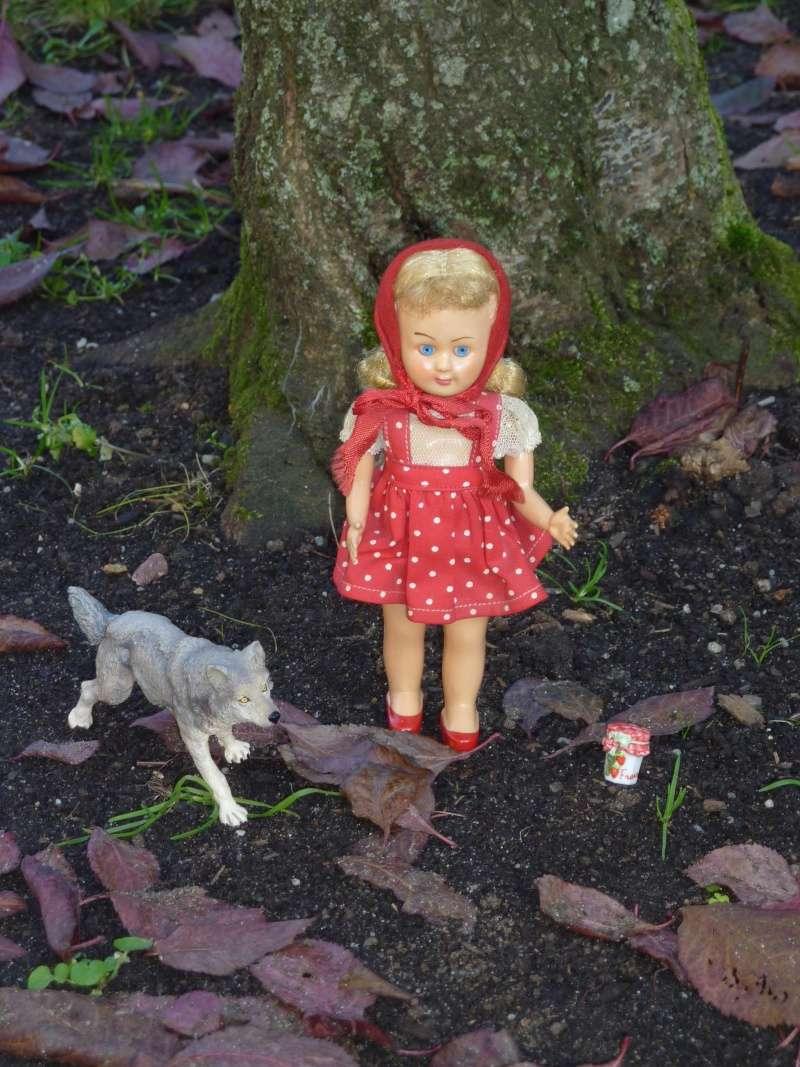mes petits chaperons rouges! nouvelles photos page 7 - Page 5 P1030211