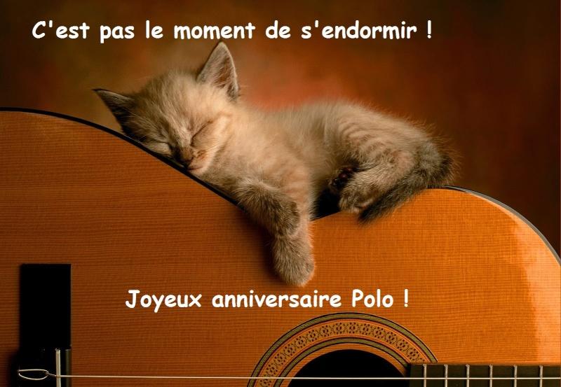 Bon anniversaire Polo Chaton10
