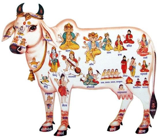 Dhatuvibhanga Sutta - Determinazione degli elementi  Ekadas10
