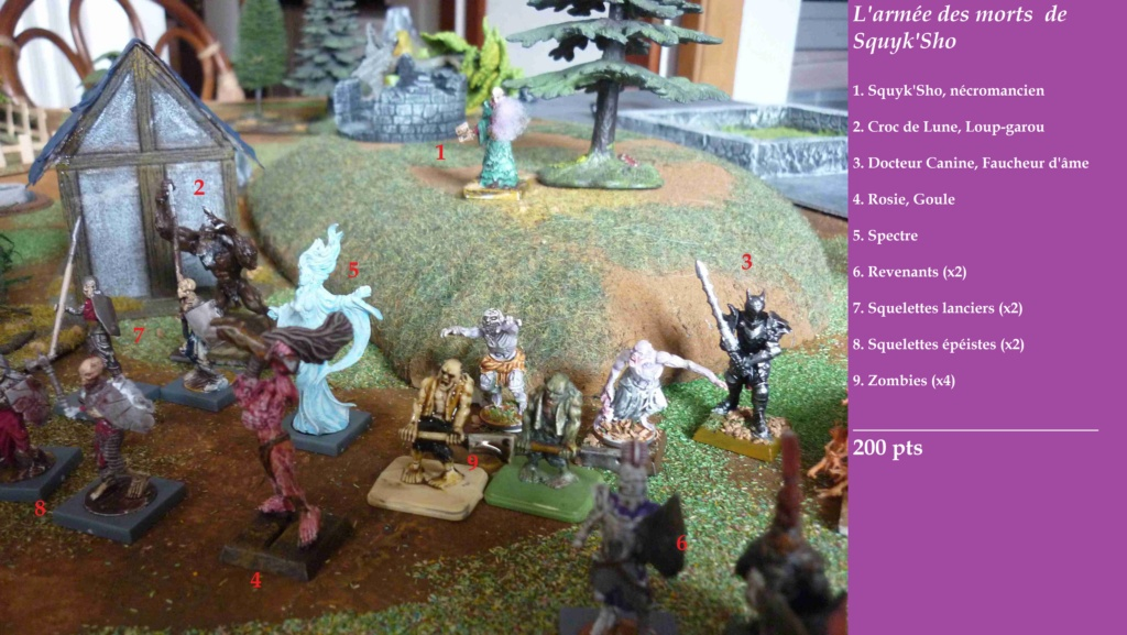 [Vanguard] Assaut Nocturne sur Vyvice - Morts vivants vs Nains Odb_mv14