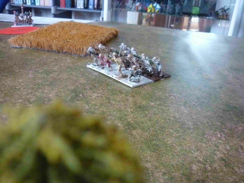 Rapport de bataille Morts Vivants vs Ogres P1330716