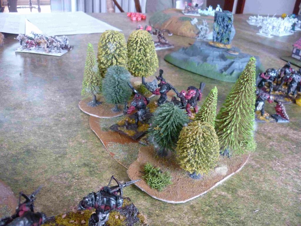 Rapport de bataille Morts Vivants vs Ogres P1330718